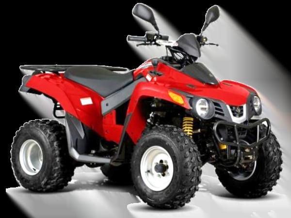 sym-quadlander-300-fresh